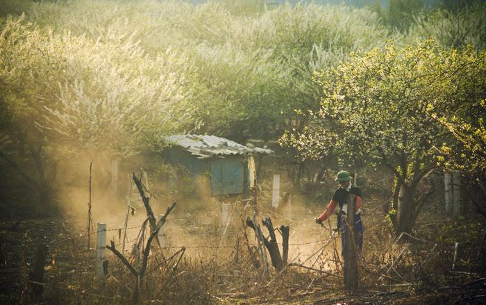 North Vietnam and Laos Adventure